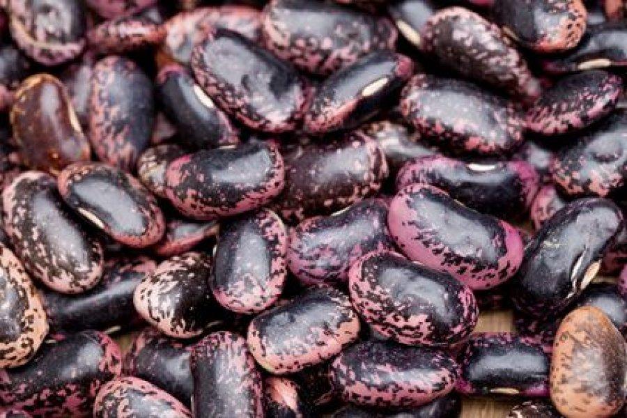 Käferbohnen Rezepte Kochrezepteat
